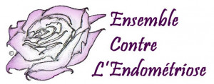 Ensemble contre l'endométriose... dans L'endométriose ensemble-contre-lendométriose-300x119
